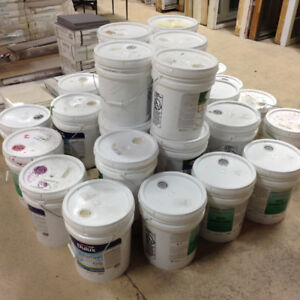 Brand New 5 Gallon Buckets of Tinted Paint