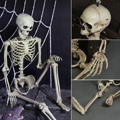 Large 90cm Poseable Full Life Size Skeleton Halloween Party Decoration Human