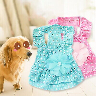 Dress For Cats (Pet Princess Dress Cat Puppy Cotton Clothes LaceFlower Skirt For Dog)