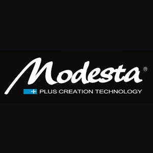 Modesta - the ULTIMATE in paint protection!