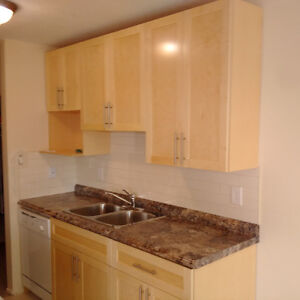9925 91 Ave-Southside Concrete Luxury- 1Bdr -2 months 1/2 PRICE!