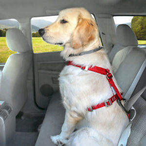 New---Kurgo Tru-Fit Crash Tested Dog Harness