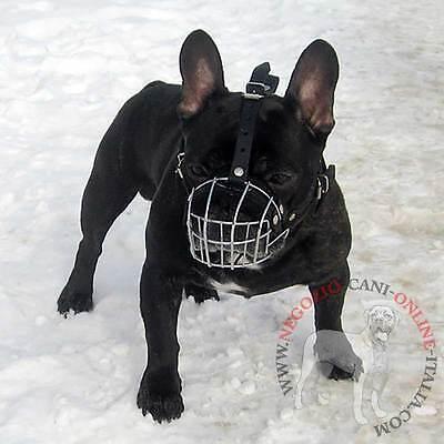 Museruola a cestello in filo metallico per Bulldog Francese, comoda, resistente