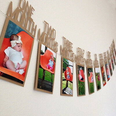 Family Baby Monthly Photo Banner 1st Birthday Decorations 1-12 Month NP2