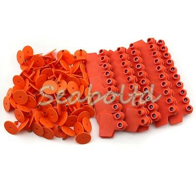 Orange Blank Plastic Livestock Ear Tag Animal Tag For Goat Sheep Pig For 100pcs