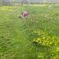 Grass Cutting - No job to big or to small