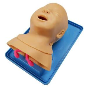 Advanced Infant Tracheal Intubation Model Baby First Aid Training Epiglottis New 220273