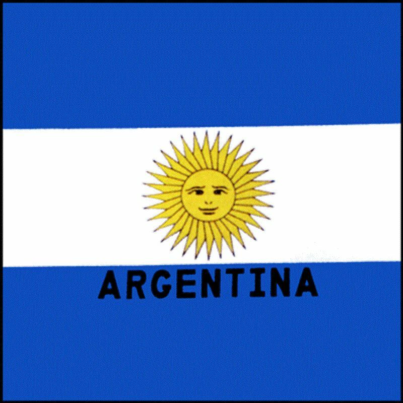 "ARGENTINA ARGENTINIAN FLAG 22"" BANDANA Bandanna Head Scarve Wrap Scarf COTTON"