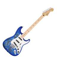 Fender Stratocaster - Limited Edition