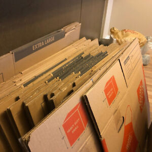 Collection of Moving Boxes - $80