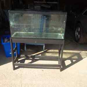35 Gallon Aquarium & Stand in Orangeville.