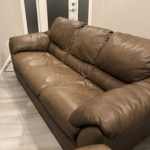 Free Leather Sofa and Loveseat