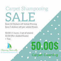 Cleaning Naturally September Promotion Save on CARPET SHAMPOOING