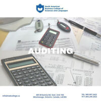 AUDITING Certificate - NAB College