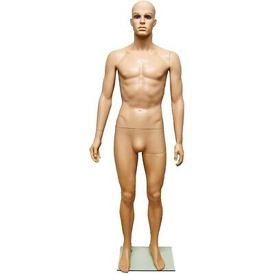 Mn-251a Plastic Male Mens Full Size Mannequin W Removable Realistic Head G2