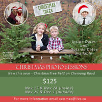 Christmas Photo Sessions by CatsMac Photography