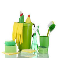 CLEANING & Maid Services - SHORT notice fine