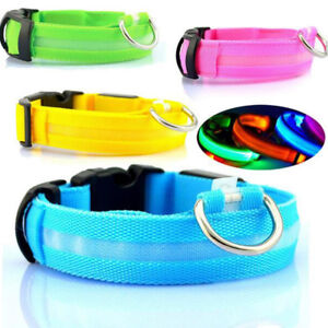FREE LED Dog Collar + More Dog Accessories
