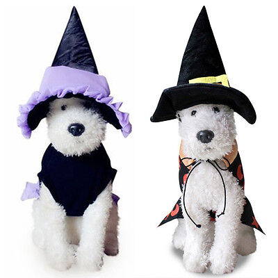 Halloween Pet Cosume Dog Cat Witch Hat Cosplay Fancy Dress Puppy Outfit Clothes