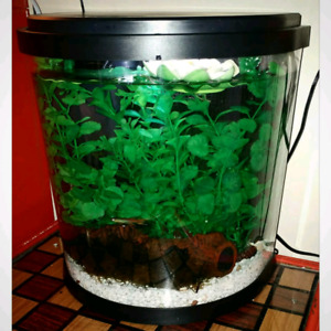 2 Small tanks for sale