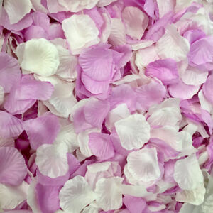 Silk Rose Petals White & Purple 10,000 counts