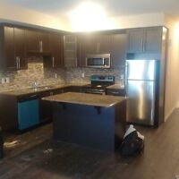 Brand new Victoria Commons Townhome for Rent in Kitchener!