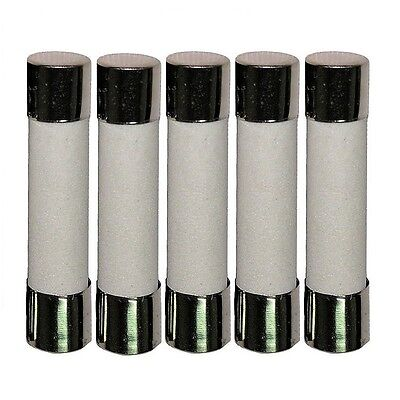 5pcs 30A Ceramic Fast Blow Acting Fuse 250V 6x30mm & USA FREE SHIPPING!