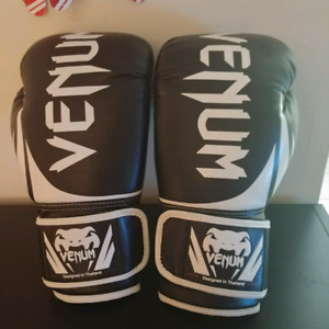 Venom 14oz boxing gloves