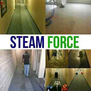 CARPET CLEANING!   FALL SPECIALS! London Ontario image 2