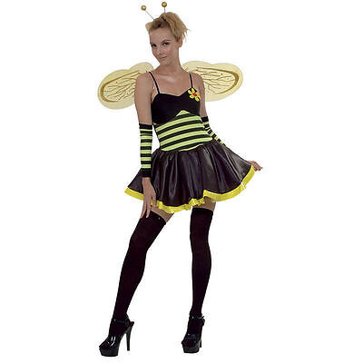 ADULT LADY BUMBLE BEE MEDIUM 12/14 FAIRY TALE/BOOK WEEK/ HEN NIGHT  Bumble Bee Lady