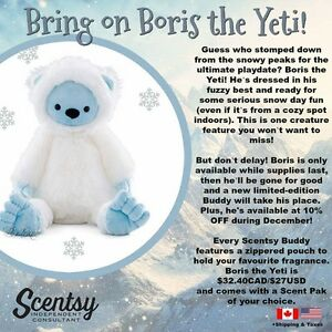 Join my Scentsy Team!!! Tina - Independent Director Kingston Kingston Area image 7
