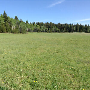 Property for sale Prince George British Columbia image 1