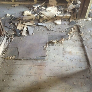 """FLOOR REMOVAL EXPERTS! BOOKING NOW! """"DYNASTY DEMO"""" 2894564083 Kitchener / Waterloo Kitchener Area image 10"""