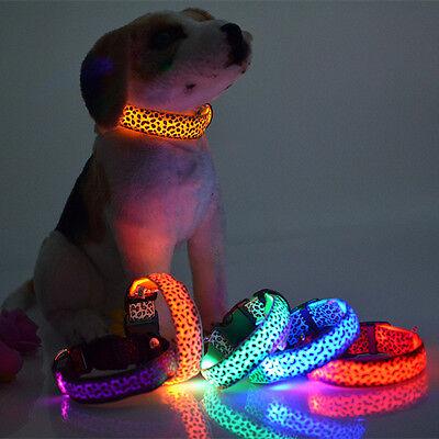 Light Up Necklaces Cheap (1pcs Pet Dog Colorful Flash Necklace LED Light Up Glow - MIX Color (size -)