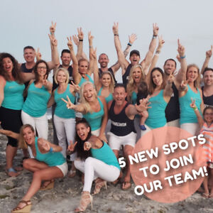 OUR TEAM IS HIRING! Full Mentorship Program Available!