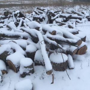 Bulk firewood for sale by pickup truck or trailer