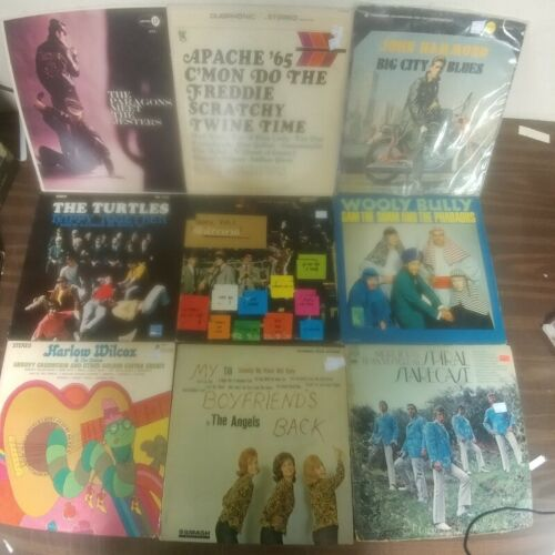 12 ROCK & ROLL Vinyl Record LP Lot TURTLES SULTANS PHAROAHS ARROWS SURF PSYCH