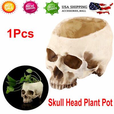 Human Skull Head Design Unique Flower Pot Planter Container Bar Home Decoration