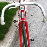 Fuji feather fixed gear superlight