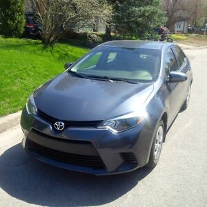 Toyota Corolla 2015 CE, 8105 km, 295$/month, almost new!