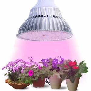 JIERNUO Grow Led Plant light LED Grow Light E27 6W 10W 18W 24W 48W 90W Plant Lamp Bulbs