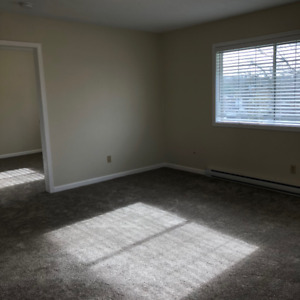 1 bedroom suite - newly renovated