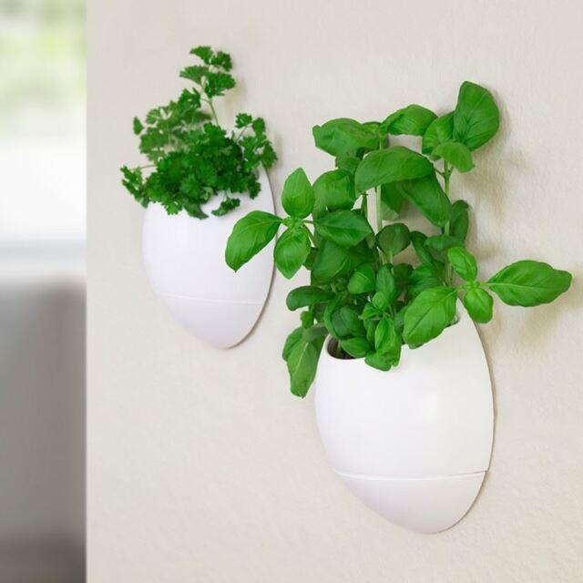 2 X Life Pod Self Watering Planters Herb Plants Herbs Flower Pots Indoor