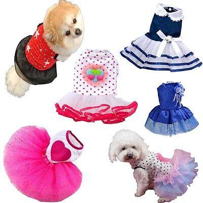 Small Dog Cat Tutu Dress Lace Skirt Pet Puppy Dog Princess Costume Apparel - Hot Cat Costume