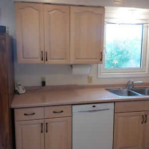 Kitchen cabinets and drawers with solid hardwood doors