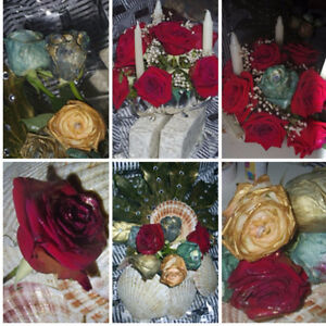 WEDDING Decorations & PHOTOGRAPHY& Flowers %50 off 613 729 1583