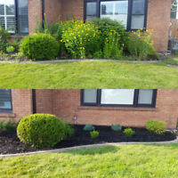 Landscaping, Fall clean up/cut back, Eaves trough clean