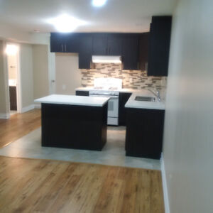 Newly built luxury one bedroom basement suite for rent