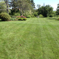 Parker Bros Yard Care - Lawn Care