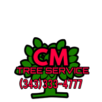 CM Tree service- Safe, affordable Tree removal